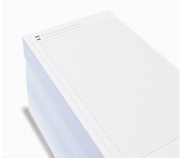 Feuilles notebook